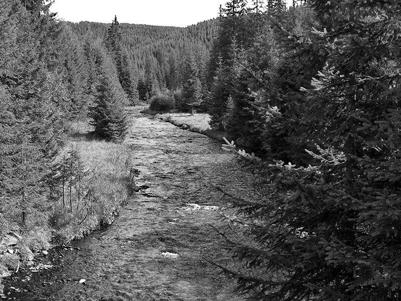 1. Valea Frumoasei, inainte de construirea barajului Oasa